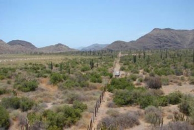 12.5 acres land for sale in Loreto
