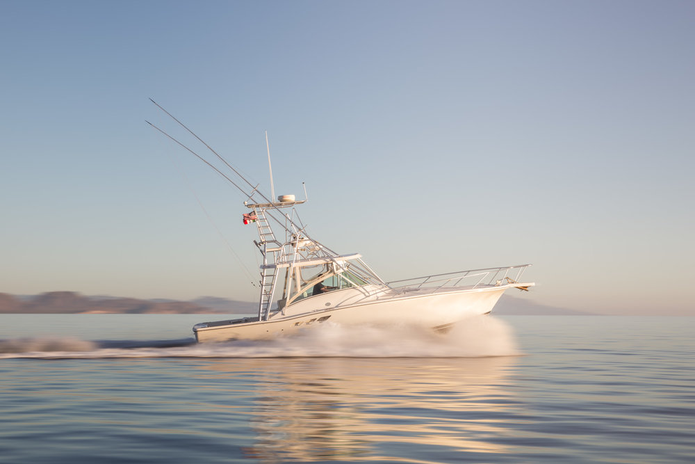 Sport fishing in Loreto with Outpost Charters