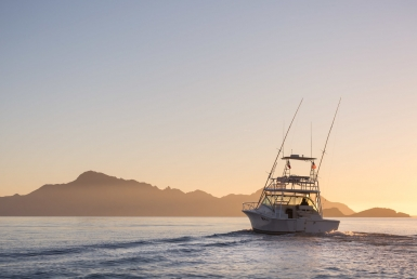 best loreto fishing charter
