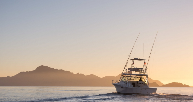 The Best Charter Fishing in Loreto, Mexico