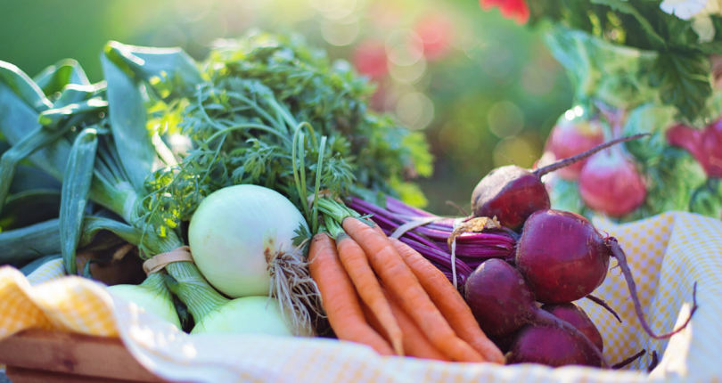 Sponsor a family with a CSA box 6 week program!